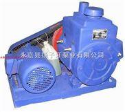 2X-真空泵型号,2X型双级旋片式系列真空泵