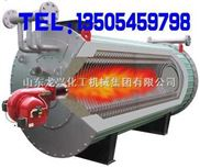 龙兴燃油导热油炉,立式燃气油炉行业L先品牌