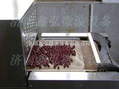 大枣果品杀菌烘干设备