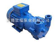 西门子式2BV2070液环真空泵