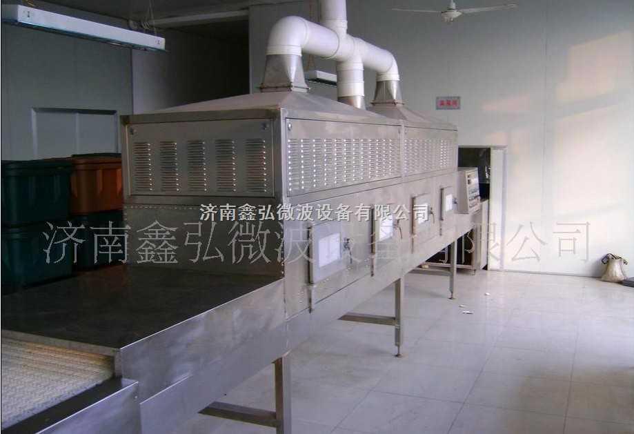新疆苹果片微波干燥机