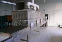 陕西苹果片微波干燥设备