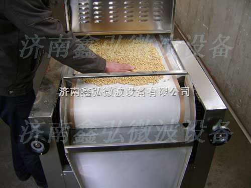 大豆脱腥熟化微波烘干机