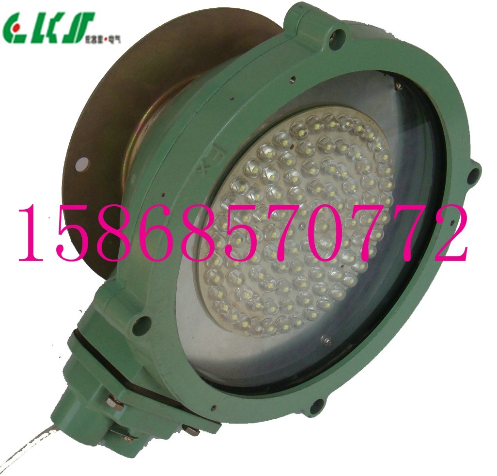 BLD100-LED防爆吸顶灯*BLD100-LED防爆吸顶灯