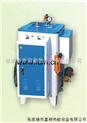 LDR0.03-0.7-24KW電熱蒸汽發生器(免報驗)