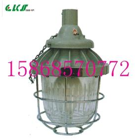BCD-100系列隔爆型防爆灯[BCD-100](IIB)