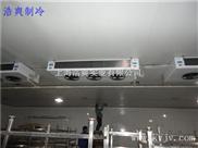 冷库-2500立方低温冷库预冷间工程