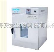 300度DHG-9145A立式鼓风干燥箱 烘箱 恒温箱 上海高温试验箱