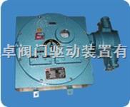 DKX-GB隔爆型控制箱