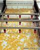 锅巴夹心米果休闲食品的生产线