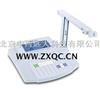 多参数水质测量仪(pH/ORP