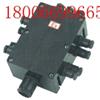 BXJ51 BJX-DIP FXJ BXJ52 BXJ8050-20/6防爆防腐接线箱,依客思超低价