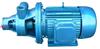 W型漩渦泵,單級旋渦泵,給水泵,不銹鋼旋渦泵
